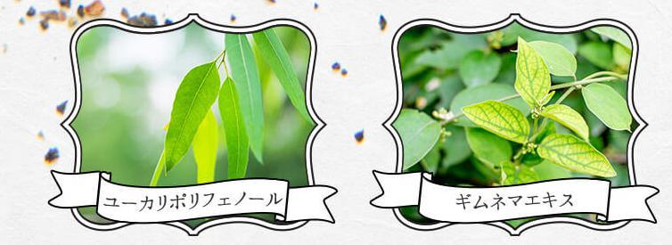 重ね発酵ハーブ茶 成分・原材料